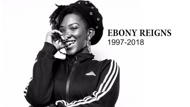 Image result for ebony gone to rest